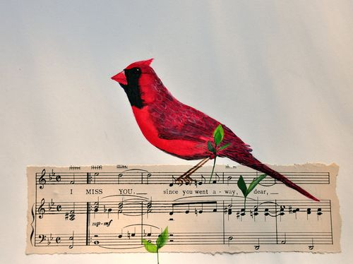 Cardinal watercolor