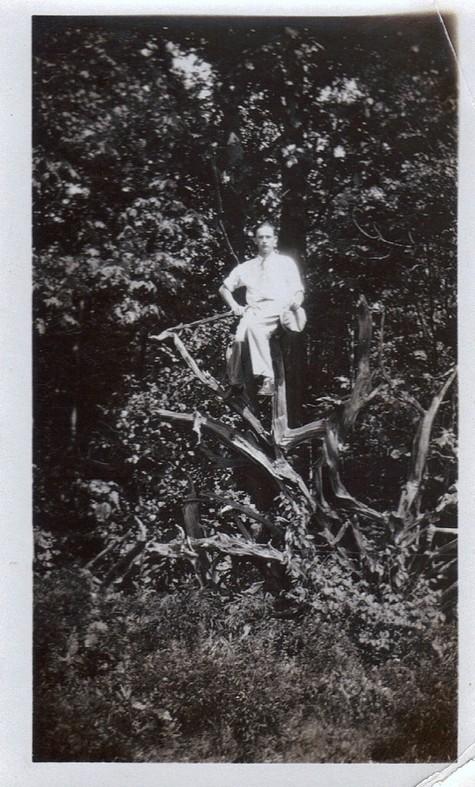 Grandpa_tree